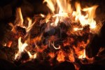 16618046-pine-cones-burning-in-a-fire