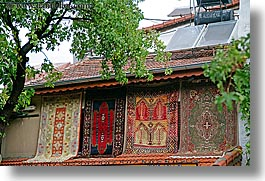 turkish-rugs-n-tree.jpg