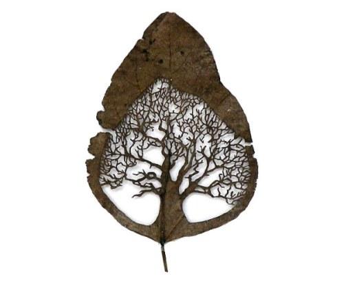 leaf_art_lorenzo_duran-01