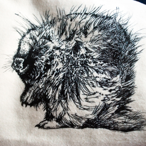 Sparrow+Avenue+Porcupine+on+cotton+fleece
