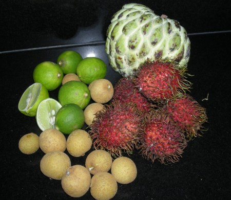 tropical-fruit-4a