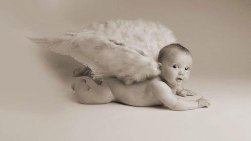 baby-innocence-photography-205696