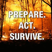 Prepare-Act-Survive
