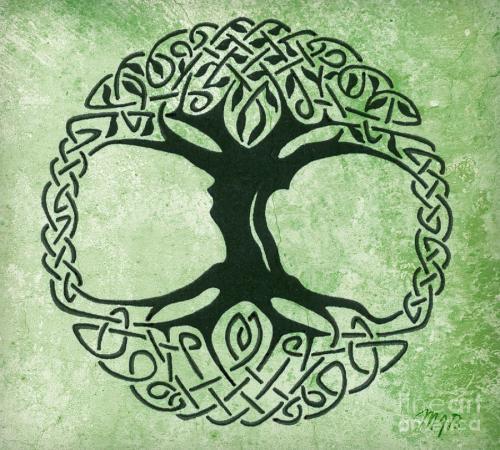 tree o9f life celtic88d41ff072707c580d1bd4a0d91b1beb