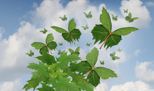 Nature freedom symbol as a growing tree with green leaves transforming into flying butterfly shapes as a metaphor for business exports and distribution or hope in the future for sustainable development of the environment.