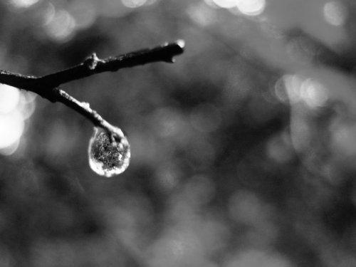 hope_inside_heaven__s_tears_by_haamaiah-d5b0t6l