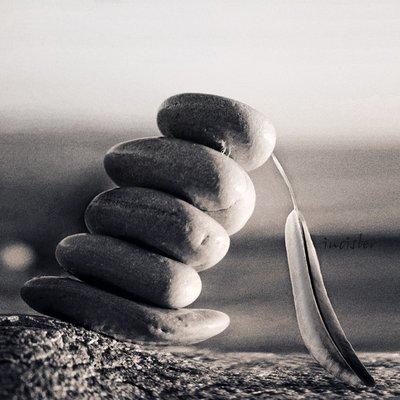balance_by_incisler